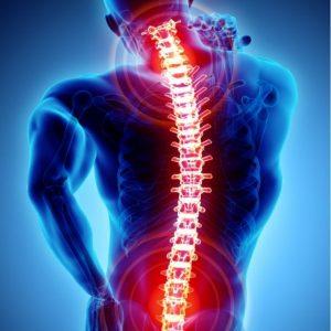 Orthopedics, Spine Center and Traumatology