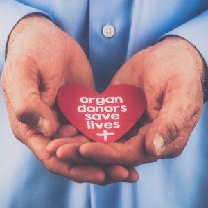 Organ Transplantation Centers