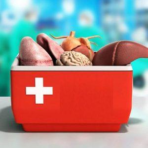 Organ Transplantation Outpatient Clinic