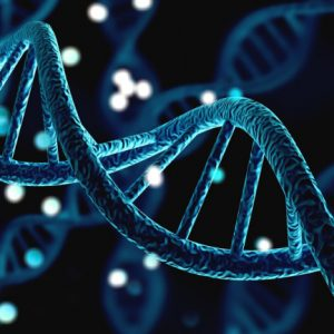 Molecular Oncology and Genetics