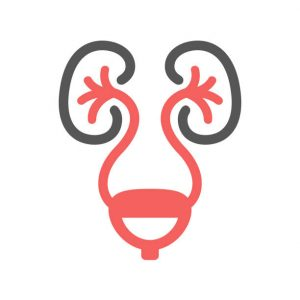 Urology