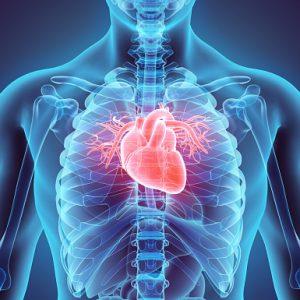 Cardiovascular and Thoracic Surgery