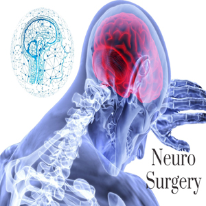 Brain and Nerve Surgery (Neurosurgery)