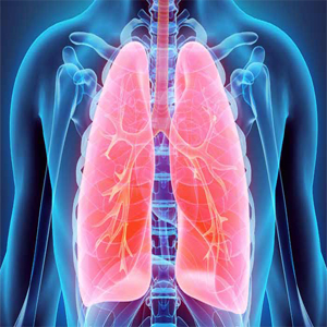 Chest diseases (lung diseases)