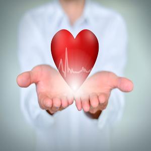 Heart Diseases (Cardiology)