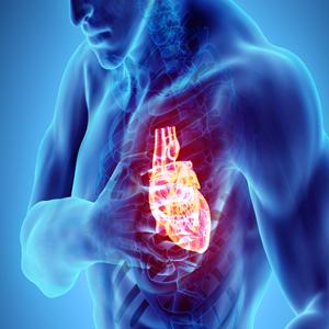 Heart and vascular surgery (cvs)