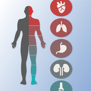 Internal diseases