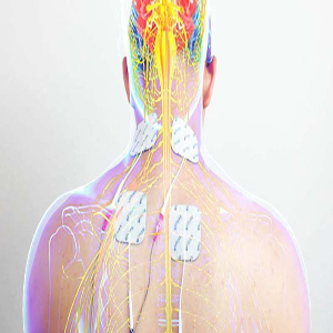 Physical Rehabilitation with Electrical Muscle Stimulation | EMS