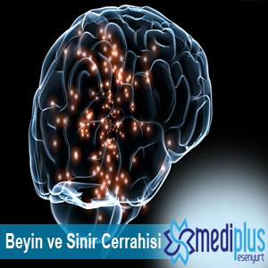 Brain and neurosurgery