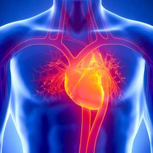 Heart and vascular diseases