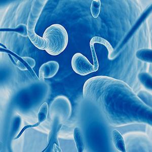 In-vitro Fertilization (IVF) Department