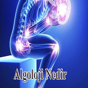 Pain Management (Algology) Department