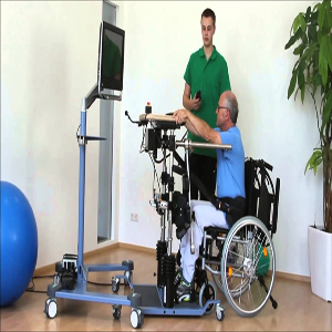 Thera Trainer Ball Balance Exercise System