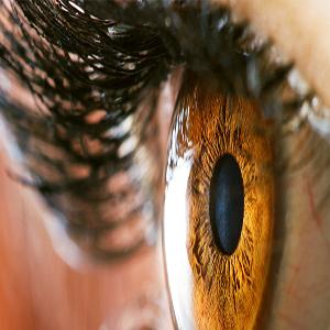 Cornea and corneal diseases